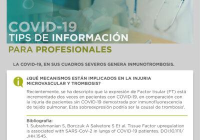 COVID-19 Tips de Información para Profesionales